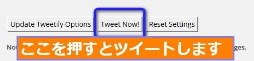 Tweetily 投稿記事 定期配信ツイート表示されるかテスト
