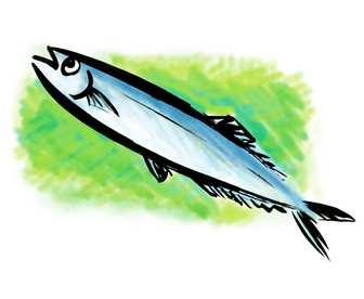 秋のサンマの筆描きイラストです★秋刀魚   商用利用もできる無料イラスト素材集サイト