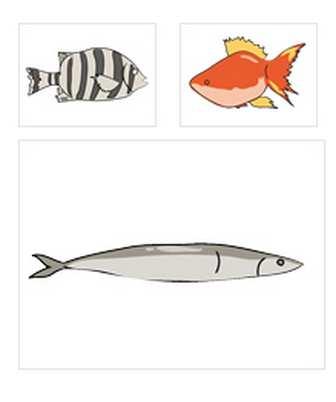 03-秋刀魚/サンマの無料クリップアート素材
