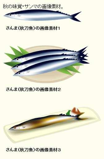 さんま(秋刀魚)のイラスト:無料画像の素材屋花子