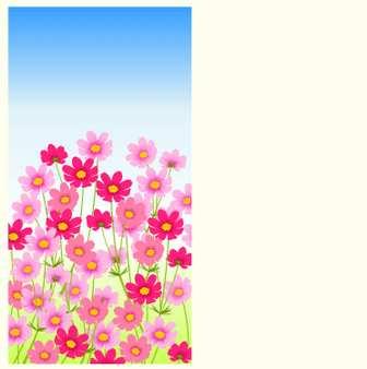 コスモス(秋桜)のイラスト:無料画像の素材屋花子