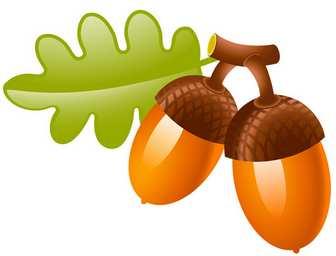 [フリーイラスト素材] クリップアート, どんぐり / ドングリ, 木の実, 植物, 秋, EPS ID:201407062000 - GATAG フリーイラスト素材集