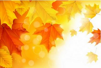 Autumn Maple Leaves Background Illustration Vector | Free Vector Graphics | All Free Web Resources for Designer - Web Design Hot!
