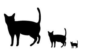 商用利用可・無料!猫素材・猫イラスト【にゃいちもん】 : 黒猫のシルエット I