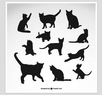 猫   無料の写真とベクトル