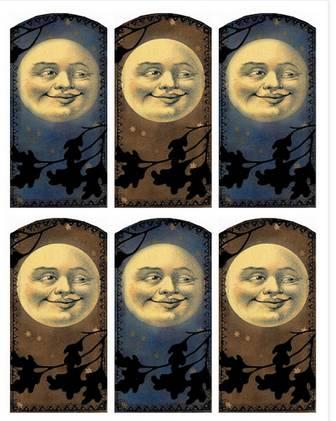 Lilac & Lavender: September Moon