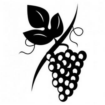 ブドウ   無料の写真とベクトル