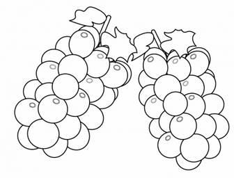 ぬりえ素材・ぶどう(葡萄)・マスカット・果物   無料のイラスト・かわいいテンプレート   素材ライブラリー