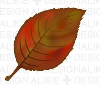 紅葉した落ち葉のイラスト素材|dakImage(ダックイメージ)