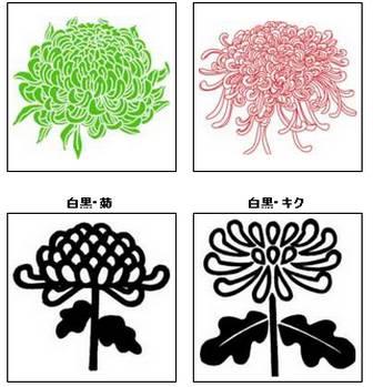 菊(きく)の花のイラスト・画像/無料のフリー素材集【百花繚乱】