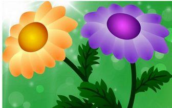 菊 | 無料の写真とベクトル