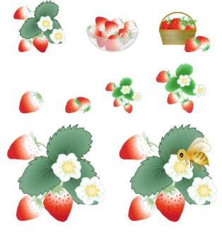 春の果物-苺(いちご、イチゴ)イラスト・アイコン 白背景用