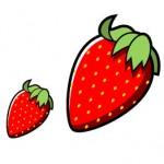 果物(苺)、無料イラスト