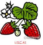 葉の付いた苺イラスト