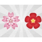 サクラの花の商用可能な無料イラスト素材