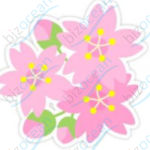 WMF 桜の花