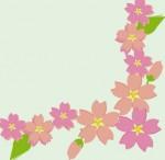 桜フレーム・イラスト♪