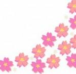 桜フレームイラスト
