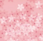 【iPhone壁紙】桜