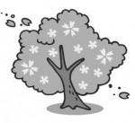 春のイラスト 桜のモノクロ