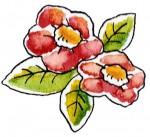 ポップな椿の花のイラスト