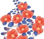カラフルな椿の花