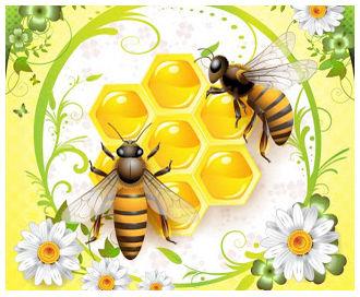 蜜蜂と蜂の巣 Two beautiful bees flying above honey | ai eps イラストレーター