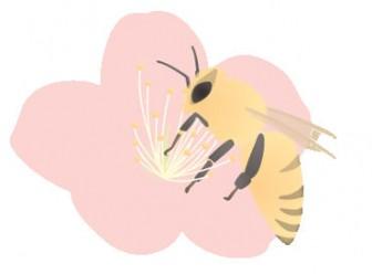 蜜蜂/ミツバチ/Honeybee: 素材庭園(フリーイラスト素材集) ~花・動物・食べ物・人物・雑貨・ほか