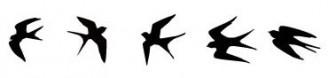 ツバメのベクターAi | 商用フリーで使える影絵素材サイト シルエットデザイン