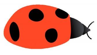 054 てんとう虫(七星瓢虫)/テントウムシ(ナナホシテントウ)/Ladybug.gif - 素材庭園(フリーイラスト素材集) ~花・動物・食べ物・人物・雑貨・ほか