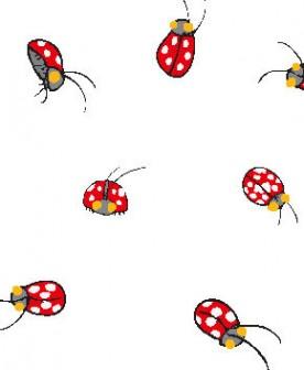(天道虫)テントウ虫の壁紙イラスト・条件付フリー素材集/壁紙TANK