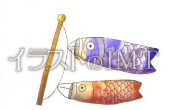 鯉のぼりのイラスト【無料イラストのIMT】商用OK、水瀬作