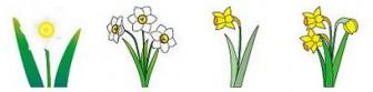 冬の花のイラスト1-花の素材-イラストポップ