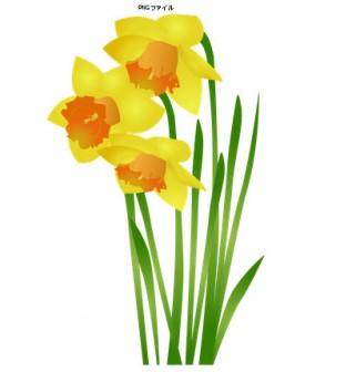 無料素材の『季節・行事素材のイラスト市場』冬素材・冬の花・水仙のイラスト