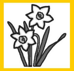 スイセン・水仙(モノクロ)/冬/花・植物の無料イラスト/ミニカット・クリップアート素材