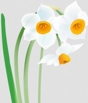 お正月の花、冬の花の無料イラスト