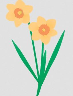 ラッパ水仙: 素材庭園(フリーイラスト素材集) ~花・動物・食べ物・人物・雑貨・ほか