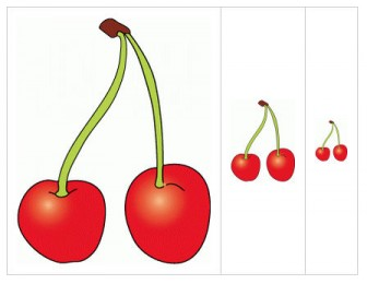 りんご・さくらんぼのイラスト素材
