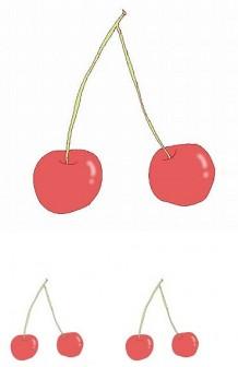 幼稚園児のイラスト・絵カード:さくらんぼのイラスト・絵カード素材 /春の果物