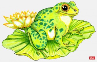 Free Frog on Lilly Pad Graphic - Transparent PNG files and Paint Shop Pro Tubes