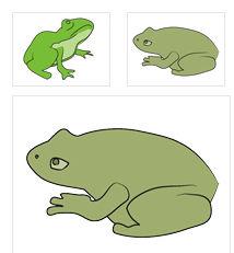 02-カエル/蛙の無料クリップアート素材