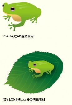 カエル(蛙)のイラスト:無料画像の素材屋花子