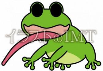 カエルのイラスト【無料イラストのIMT】商用OK、ヨーローズ作