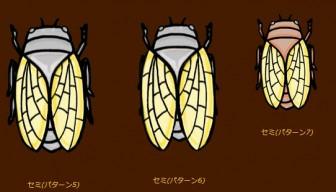 蝉(セミ)のイラスト | イラスト素材:パンコス