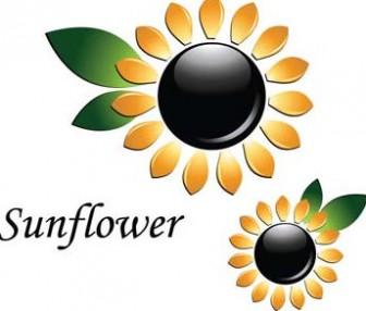 3d sun flower vector, flower vector ai, 3d vector ai illustrator, adobe illustrator photoshop 3d vector design, sun flower ai illustrator - Free Vector Art & Graphic