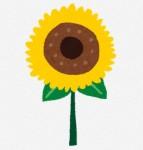 夏のイラスト「向日葵」: 無料イラスト かわいいフリー素材集