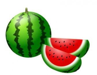 果物-スイカ イラスト 画像フリー素材|無料素材倶楽部