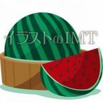 夏休みスイカのイラスト【無料イラストのIMT】商用OK、トリ作