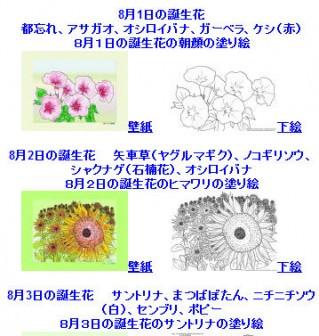 8月の誕生花の塗り絵