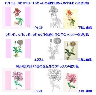 8月の誕生日の花の塗り絵1
